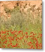 Forward To The Wall Metal Print