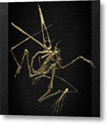Fossil Record - Gold Pterodactyl Fossil On Black Canvas #1 Metal Print