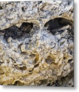 Fossil Rock Abstract - Eyes Metal Print