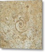 Fossils In The Cave Metal Print
