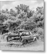 Found Off Road Dead Metal Print