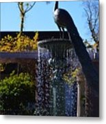 Fountain And Peacock Metal Print