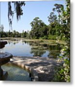 Fountain At The Swamp Metal Print