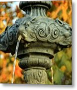Fountain At Union Park Metal Print