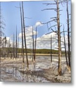 Fountain Paint Pots Lodgepole Pines - Yellowstone Metal Print