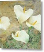 Four Lilies Metal Print