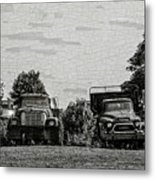 Four Old Friends Metal Print