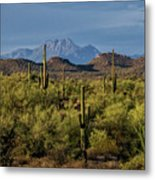 Four Peaks On The Horizon  Metal Print