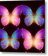 Four Pretty Butters Metal Print