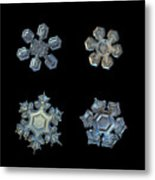 Four Snowflakes On Black 2 Metal Print