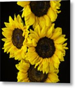 Four Sunny Sunflowers Metal Print
