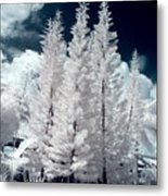 Four Tropical Pines Infrared Metal Print