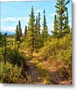 Four Wheeler Trail - Richardson Highway Metal Print