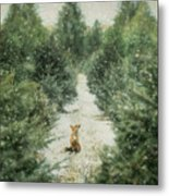 Fox In The Flurries Metal Print