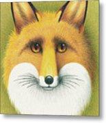 Fox Portrait Metal Print