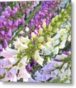 Foxglove Card Metal Print