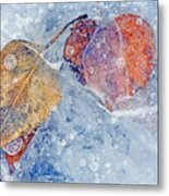 Fractured Seasons Metal Print