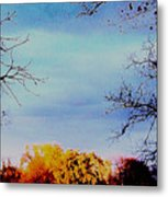 Framed Fall Trees Metal Print
