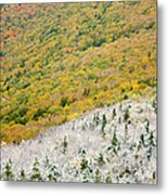 Franconia Notch State Park - White Mountains Nh Usa Autumn Metal Print