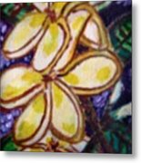 Frangipani In The Tropics  Series 1 Metal Print