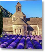 All Purple, Cistercian Abbey Of Notre Dame Of Senanque, France  Metal Print