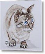 Frankie The Cat Metal Print