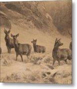 Franz Xaver Von Pausinger Rotwild Im Winter Metal Print