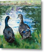 Fred And Ethel At Scott's Pond Metal Print
