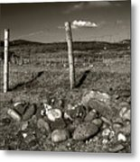 Fred Fencestone Metal Print