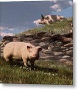 Free Range Pigs Metal Print