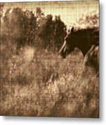 Freedom Run After Rescue Metal Print