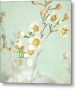 Freesia Blossom Metal Print