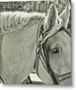 French Braided Gray Metal Print