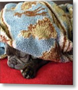 French Bulldog Naps Under A Blanket-1 Metal Print