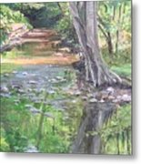 French Creek Metal Print
