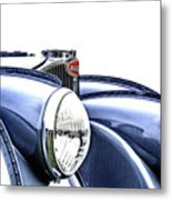 French Curves Metal Print