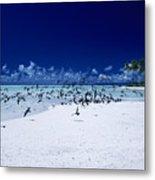 French Polynesia, Tetiaro Metal Print
