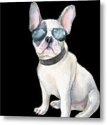 Frenchie French Bulldog Aviators Dogs In Clothes Metal Print