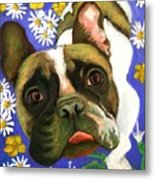 Frenchie Plays With Frogs Metal Print