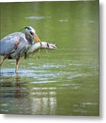 Fresh Catch Of The Day Metal Print