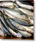 Fresh Fishes In A Market 2 Metal Print
