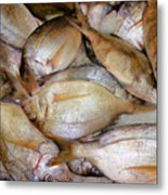 Fresh Fishes In A Market 4 Metal Print
