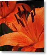 Fresh Floral Delight Metal Print