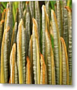 Fresh Fronds Metal Print