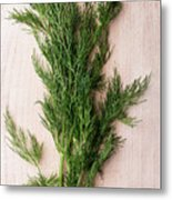 Fresh Green Dill On Wooden Plank Metal Print