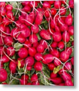 Fresh Red Radishes Metal Print