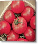 Fresh Ripe Tomatoes Metal Print