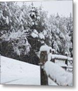 Fresh Snowfall Metal Print