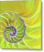 Fresh Spiral Metal Print