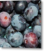 Freshly Picked Blueberries Metal Print
